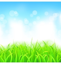 Landscape with Grass and Sky vector