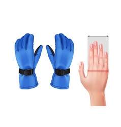 Measuring hand for gloves vector