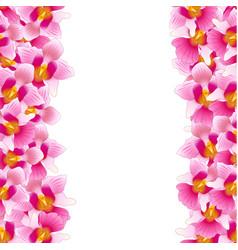 pink vanda miss joaquim orchid border vector image