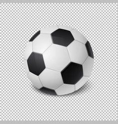realistic soccer ball icon closeup isolated vector image