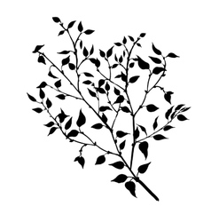 Tree branches with leaves and berries vector