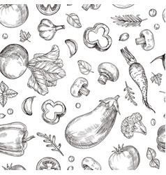 vegetable hand drawn seamless pattern fresh vector image
