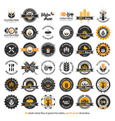 36 whole wheat flour and gluten free labels vector