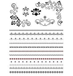Corners and borders with floral patterns vector image