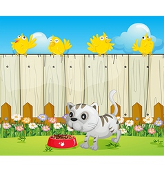 A white cat with a dog food and four yellow birds vector image