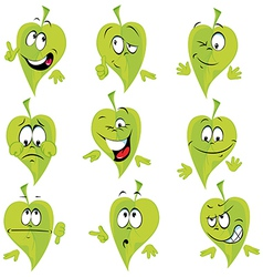 green leaf cartoon vector image