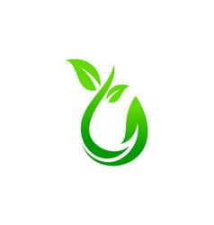 green leaf nature logo vector image