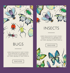 hand drawn insects web banner vector image