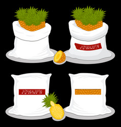 on theme big set different types pineapple vector image