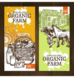 Organic Farm Vertical Banners vector image