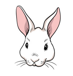rabbit head isolated vector image