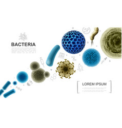 Realistic biological microorganisms collection vector
