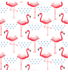 seamless pattern with flamingo pink bird vector image