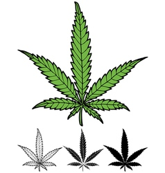 Hemp Leaf vector image
