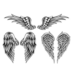 wings set4 vector image
