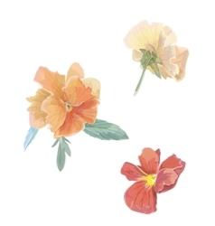 Set of flowers viola violet Watercolor vector image vector image