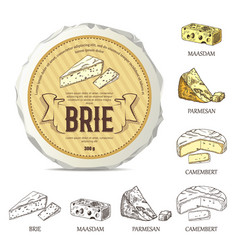 Creative sticker for brie on round cheese mockup vector