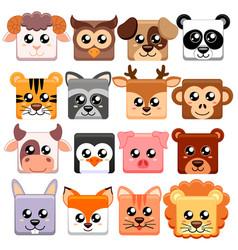 Cute cartoon animals head square shape vector