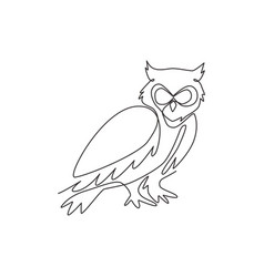 one single line drawing elegant owl bird vector image