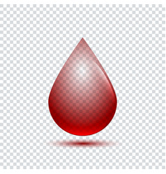 realistic blood drop with shadow on transparent vector image