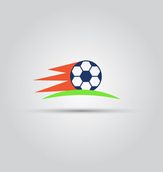 soccer ball isolated colored icon vector image