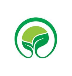Circle leaf eco nature logo vector