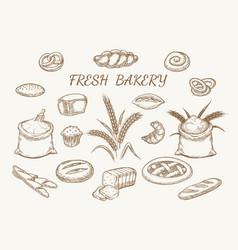 fresh bakery elements sketch vector image vector image