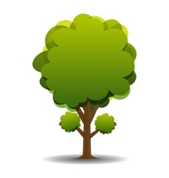 A stylized drawing of a green olive vector image