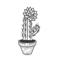 Blooming cactus in pot sketch vector