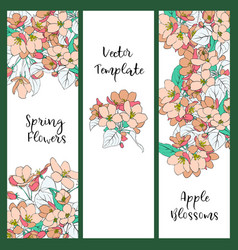 floral template with apple blossoms vector image