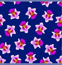 purple vanda miss joaquim orchid on navy blue vector image