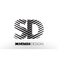 sd s d lines letter design with creative elegant vector image