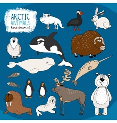 Set of hand-drawn arctic animals vector image