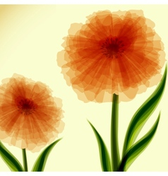 Background with transparent flowers vector image