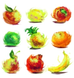 set of drawing fruit vector image