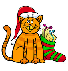 Cat with gifts on christmas time vector