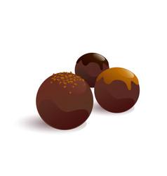 chokladbolls pastry vector image