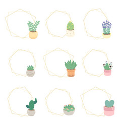 cute luxury flat style cactus and succulent vector image