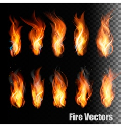 Fire on transparent background vector image vector image