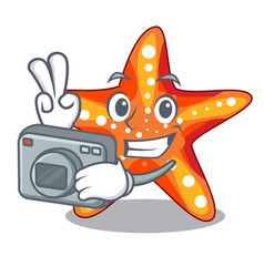 Photographer starfish isolated with in the vector