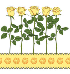 set color with yellow roses vector image