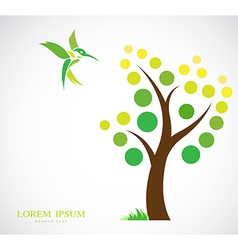 Trees and hummingbirds vector