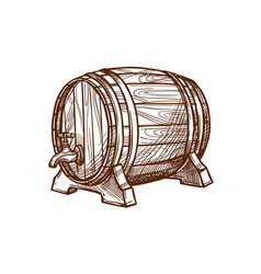wooden beer barrel sketch icon vector image