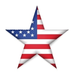 American United States Flag in glossy star button vector image vector image