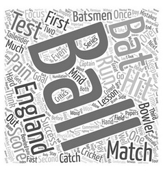 Success Lessons From Cricket text background vector image vector image