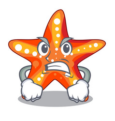 Angry starfish isolated with in the cartoons vector