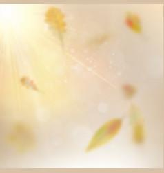 autumn festive background eps 10 vector image