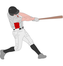 Baseball player detailed vector