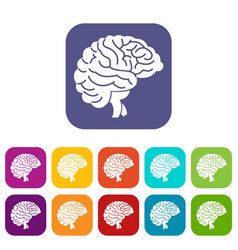 brain icons set vector image