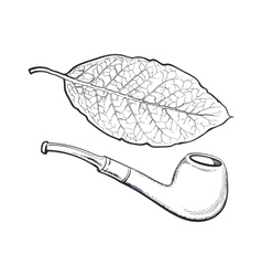 Luxurious wooden tobacco smoking pipe sketch vector